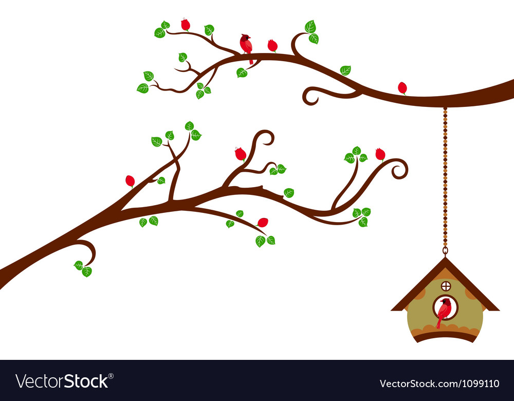 Two branches with modern birdhouse vector