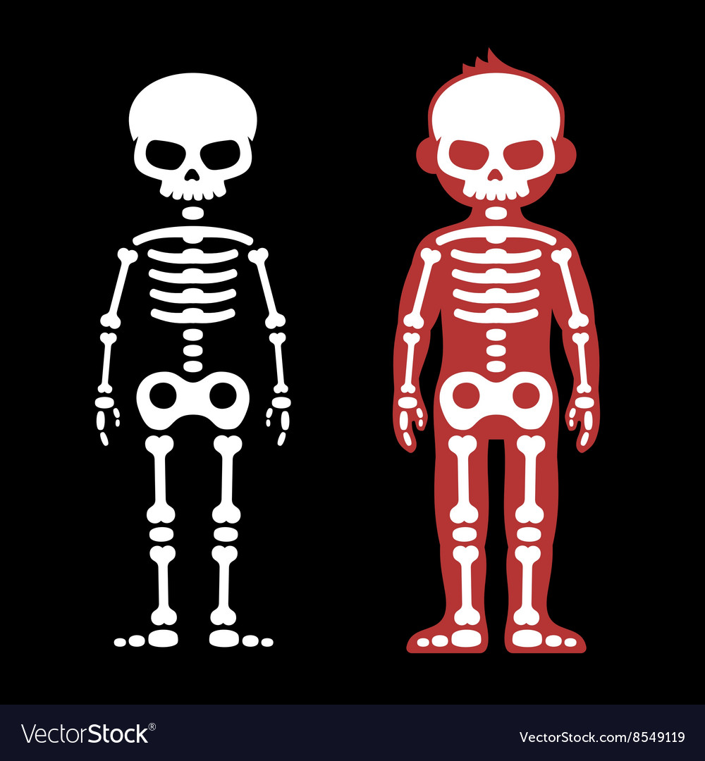 Skeletons human bones set cartoon style vector