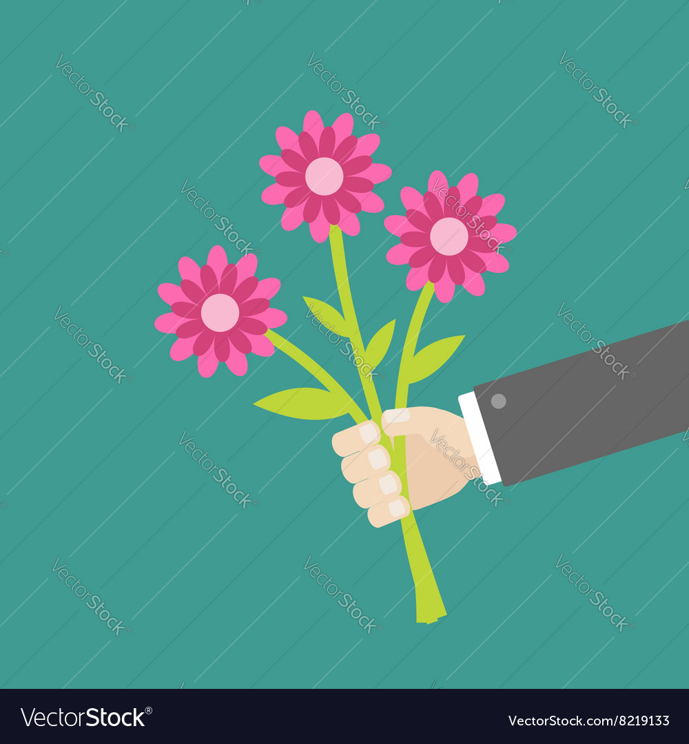 Businessman hand holding bouquet of three pink vector