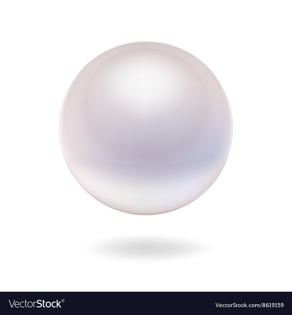 Isolated pearl vector