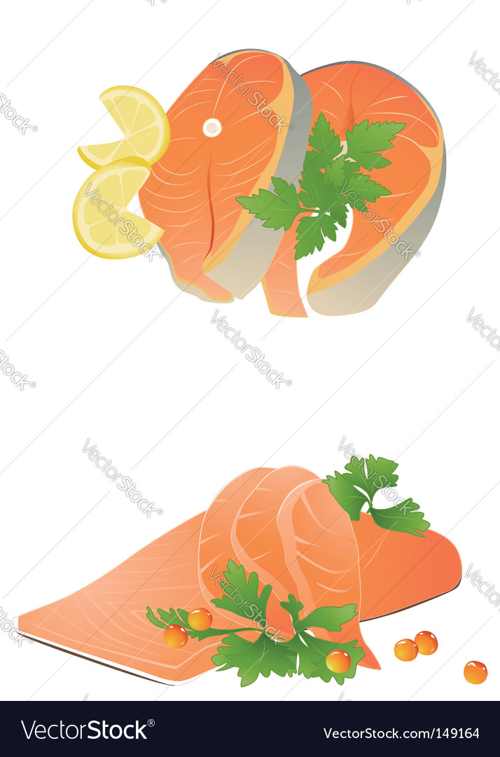 Fresh salmon steak vector