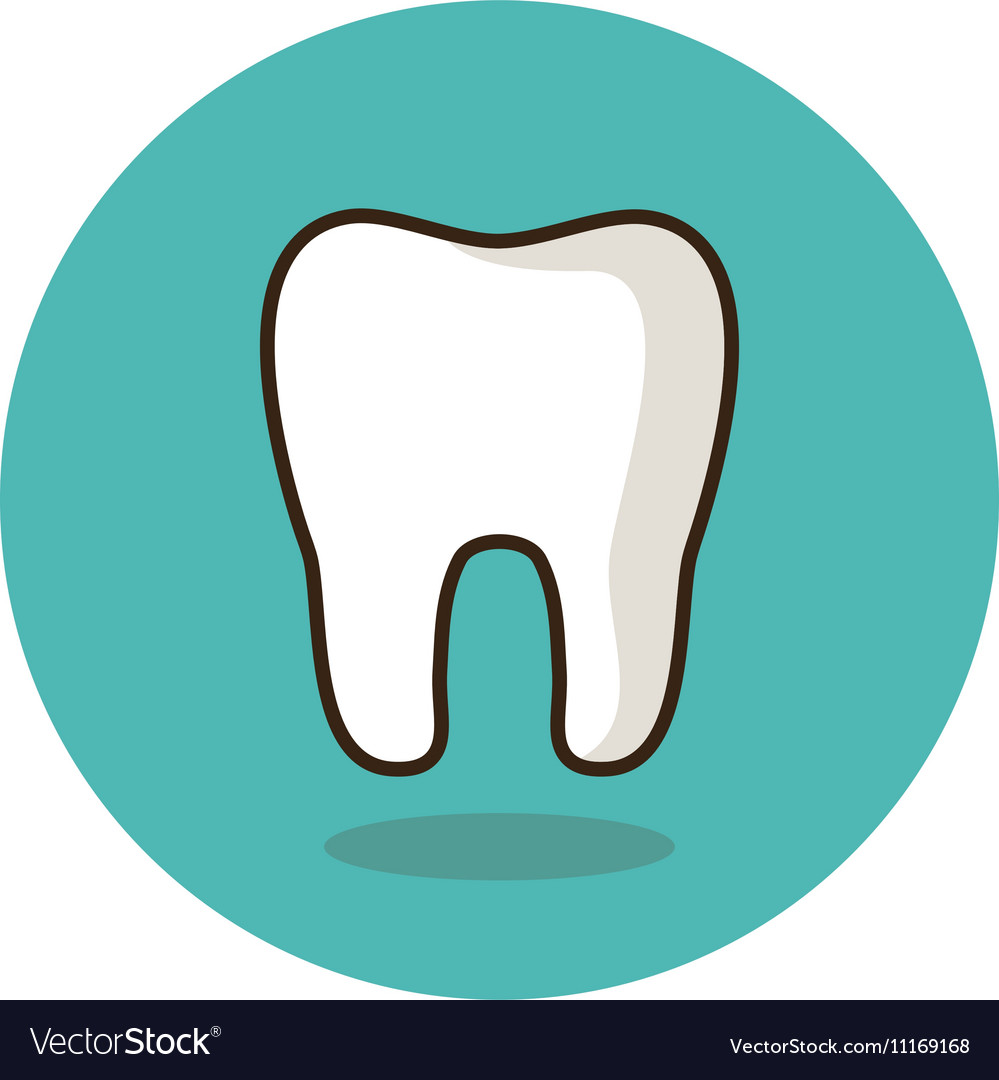 Tooth flat icon medical vector