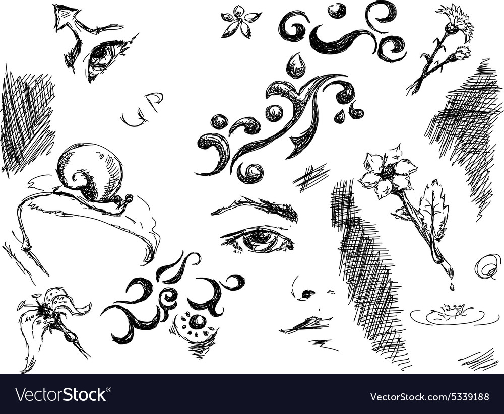 Black ink doodles vector