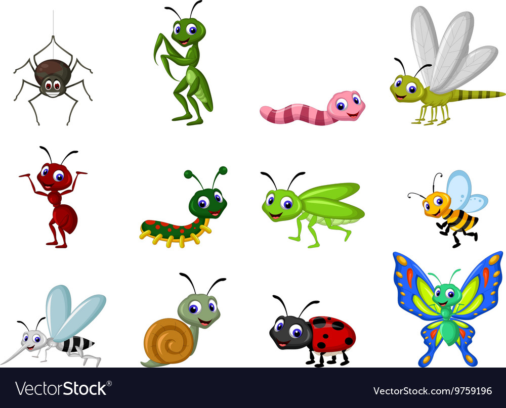 Collection of insects cartoon vector