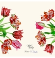 Background with bouquet of tulips2-04 vector image