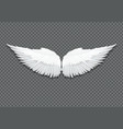 realistic white angel wings on transparent vector image