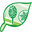 Leaf tree green vector image