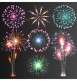 Festive Firework Isolated Pictograms vector image vector image