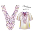 Neckline embroidery Beautiful fashionable collar vector image