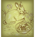 Easter Bunny Sketch vector image