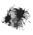 splash black white and grey vector image vector image