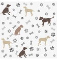 Background with dogs paw print and bone vector image