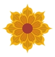 yellow flower icon vector image