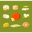 Different Types of Cheese Set vector image