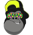 Funny monkey with glasses vector image