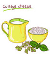 milk and cottage cheese vector image