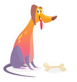 cartoon colorful dog vector image
