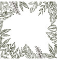 hand drawn frame of leaves and plants vector image