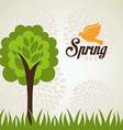 spring season design vector image