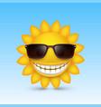 smiley sun glasses vector image