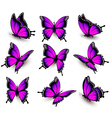 Beautiful of pink butterfly in different positions vector image