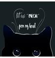 black night cat vector image