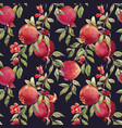 pomegranate fruit pattern vector image