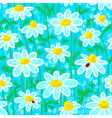 ladybirds and camomile vector image