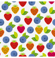 berry background vector image vector image