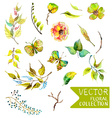 Watercolor flowers collection for different design vector image