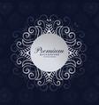 stylish premium mandala frame floral background vector image