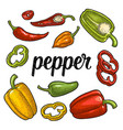whole half slice different types of pepper vector image