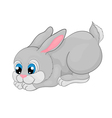 rabbit cartoon with isolation on a white backgrou vector image