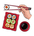 eating sushi - human hand with chopsticks and soy vector image