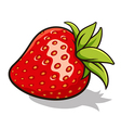Strawberry 001 vector image vector image