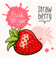 Strawberry concept 001 vector image