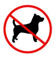 no dog symbol vector image