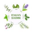 Italian seasoning vector image