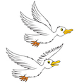 sea gulls vector image