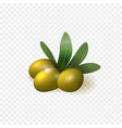 realistic green olives with leaves isolated vector image