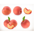 Peach Sweet fruit 3d icons set Realistic vector image vector image