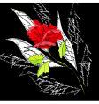 original background with red rose vector image