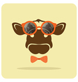 image of a cow wearing glasses vector image vector image