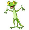 gecko vector image