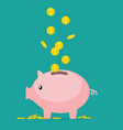 pig piggy bank vector image