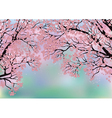 Background with blossoming trees vector image vector image