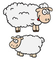 two sheep vector image