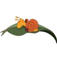 Sleeping snail cartoon vector image