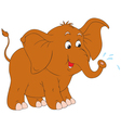 little elephant vector image vector image