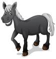 Black horse vector image